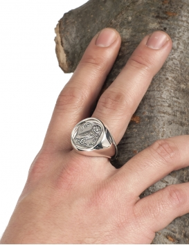 Large Mens Owl of Wisdom (wise owl) Greek coin ring