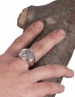 Apollo coin ring. Extra large, sterling silver